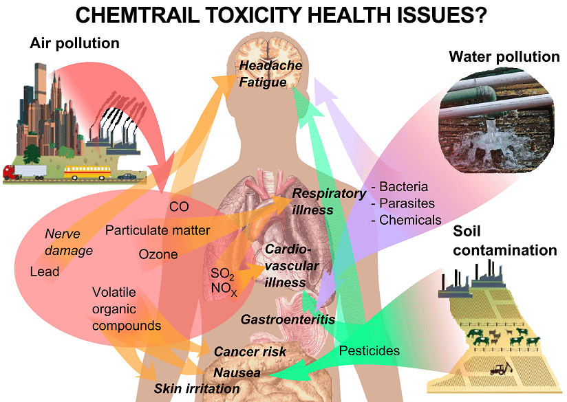 HOW TO PROTECT AND DETOX FROM CHEMTRAILS - Chem Defense